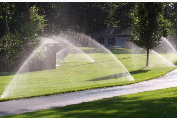 Irrigation1