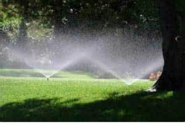 Irrigation3